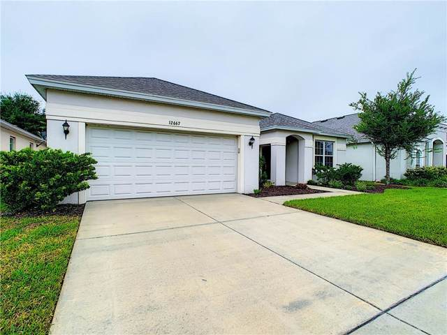 12667 Flatwood Creek Dr, Gibsonton, FL 33534 (MLS #T3193801) :: Team Pepka