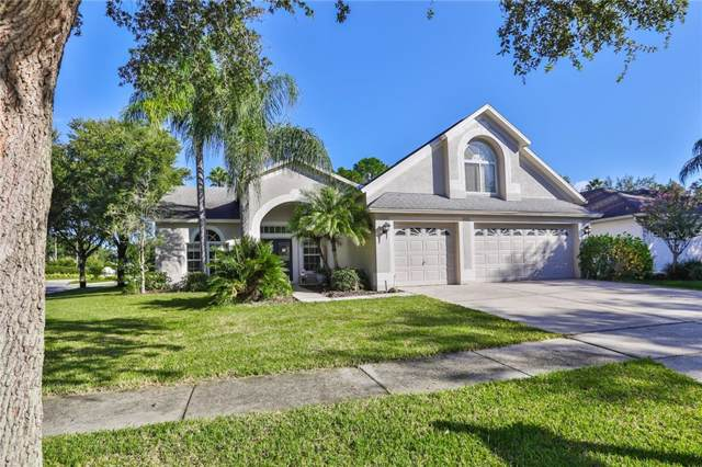 10202 Thicket Point Way, Tampa, FL 33647 (MLS #T3193823) :: Lovitch Realty Group, LLC