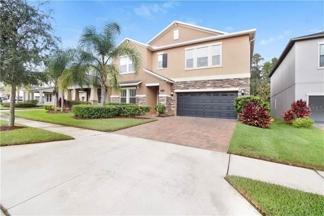 19346 Paddock View Drive, Tampa, FL 33647 (MLS #T3193829) :: Team 54
