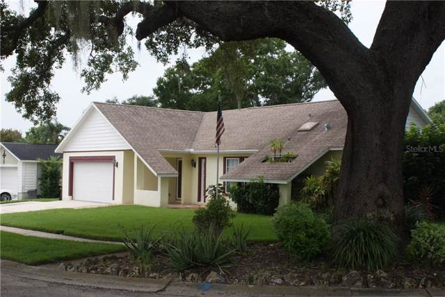776 Harbor Way, Palm Harbor, FL 34683 (MLS #T3193867) :: Lock & Key Realty