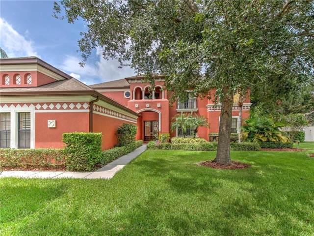22437 Oakville Drive, Land O Lakes, FL 34639 (MLS #T3193884) :: Team 54