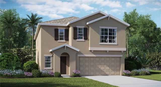 5119 White Chicory Drive, Apollo Beach, FL 33572 (MLS #T3193920) :: Zarghami Group
