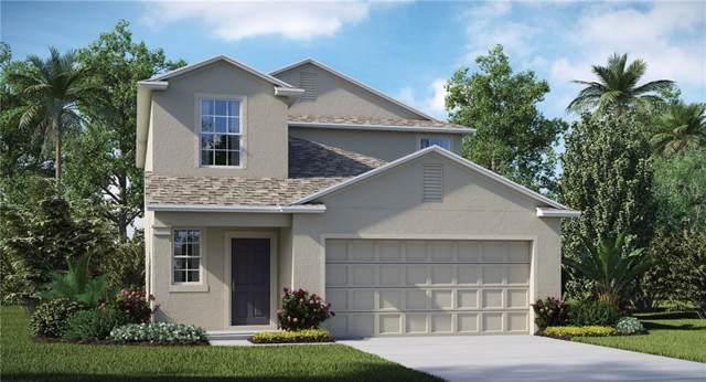 5123 White Chicory Drive, Apollo Beach, FL 33572 (MLS #T3193941) :: Zarghami Group