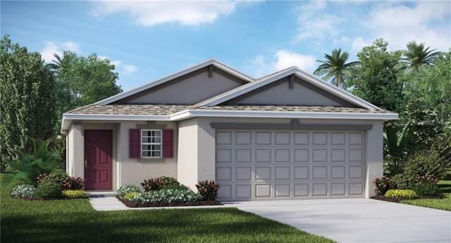 5131 White Chicory Drive, Apollo Beach, FL 33572 (MLS #T3193959) :: Griffin Group