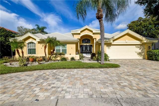 10204 Bay Breeze Court, Tampa, FL 33615 (MLS #T3193966) :: Team 54
