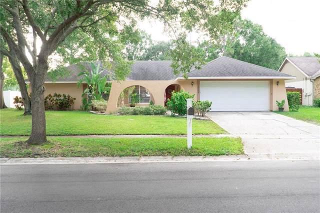 15104 Naturewalk Drive, Tampa, FL 33624 (MLS #T3193976) :: Team 54