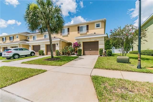 20460 Needletree Drive, Tampa, FL 33647 (MLS #T3194004) :: Delgado Home Team at Keller Williams