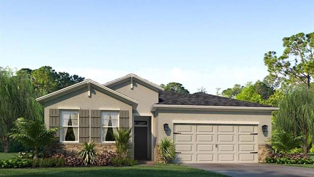 1081 Manzanar Place, Wesley Chapel, FL 33543 (MLS #T3194007) :: Cartwright Realty
