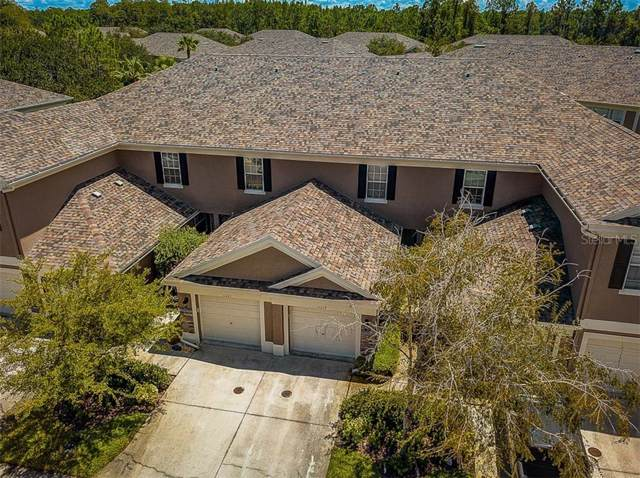11221 Windsor Place Circle, Tampa, FL 33626 (MLS #T3194094) :: Team 54