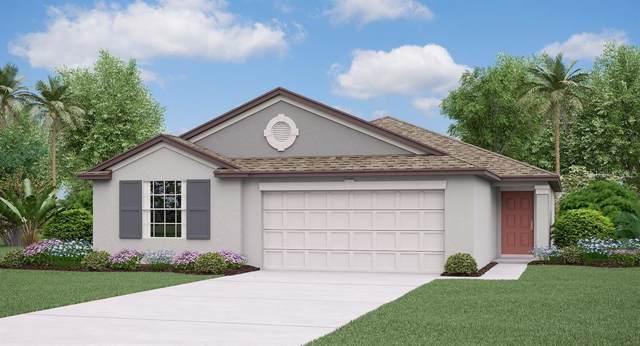3290 Lytton Hall Drive, Zephyrhills, FL 33540 (MLS #T3194098) :: Cartwright Realty