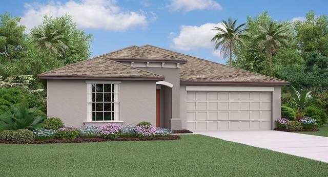 3287 Lytton Hall Drive, Zephyrhills, FL 33540 (MLS #T3194101) :: Cartwright Realty