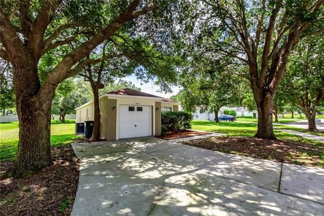 1045 Harvest Moon Drive, Seffner, FL 33584 (MLS #T3194141) :: Premium Properties Real Estate Services