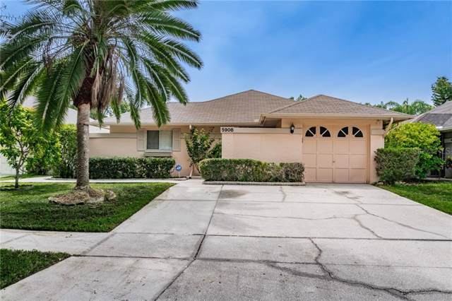 5908 Bitterwood Court, Tampa, FL 33625 (MLS #T3194149) :: Team Bohannon Keller Williams, Tampa Properties