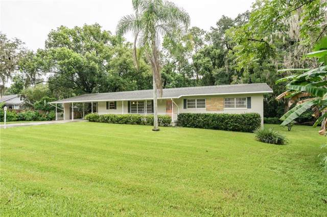 31 Oak Street, Brooksville, FL 34601 (MLS #T3194169) :: Ideal Florida Real Estate