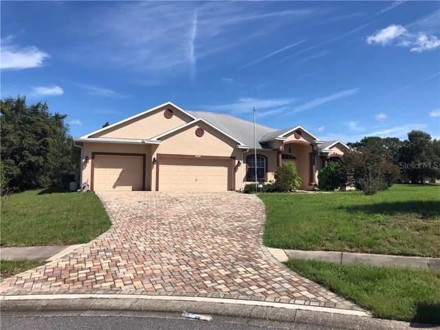 14105 Feltner Court, Hudson, FL 34667 (MLS #T3194192) :: Homepride Realty Services