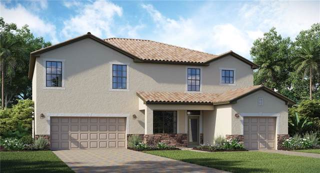 20749 Benissimo Drive, Venice, FL 34293 (MLS #T3194226) :: Delgado Home Team at Keller Williams