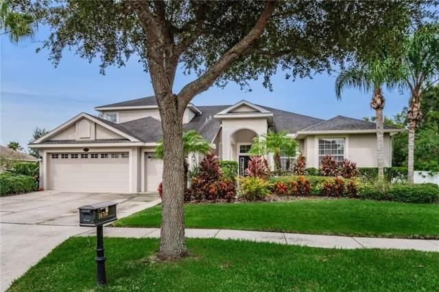16704 Amberhill Lane, Lutz, FL 33558 (MLS #T3194228) :: Team Bohannon Keller Williams, Tampa Properties