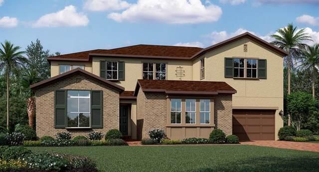 1515 Eagle Wind Terrace, Winter Springs, FL 32708 (MLS #T3194256) :: Bustamante Real Estate