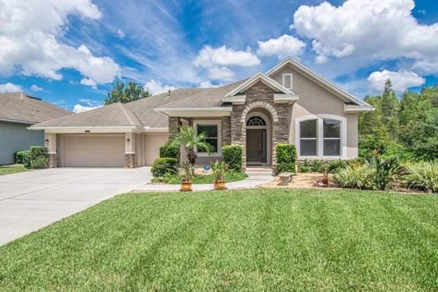Address Not Published, Land O Lakes, FL 34637 (MLS #T3194266) :: Cartwright Realty