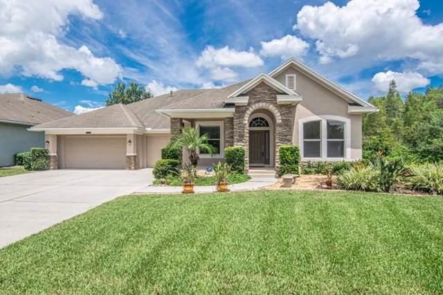 Address Not Published, Land O Lakes, FL 34637 (MLS #T3194266) :: Team 54