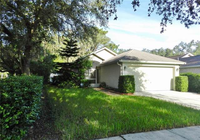 5873 Meadowpark Place, Lithia, FL 33547 (MLS #T3194299) :: Kendrick Realty Inc