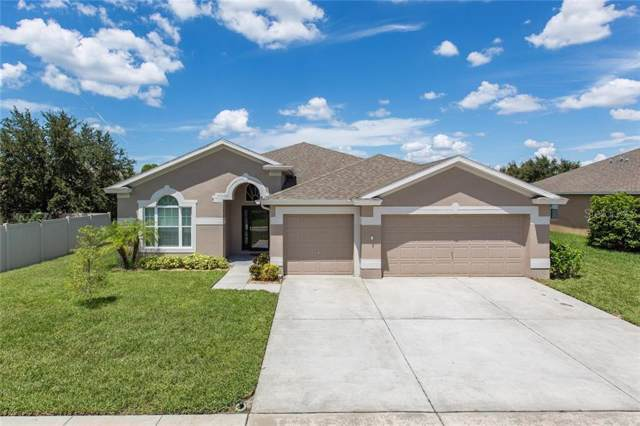 2305 Triggerfish Court, Holiday, FL 34691 (MLS #T3194362) :: Bridge Realty Group