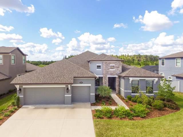 10628 Mistflower Lane, Tampa, FL 33647 (MLS #T3194365) :: Medway Realty