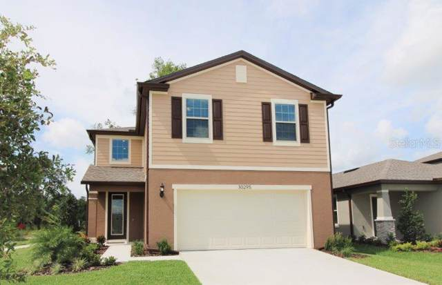 30295 Larimar Lane, Wesley Chapel, FL 33545 (MLS #T3194412) :: Cartwright Realty