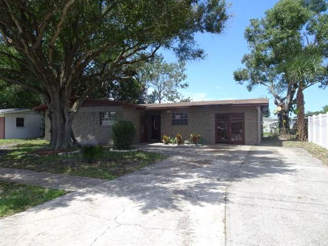 5810 Liverpool Drive, Tampa, FL 33615 (MLS #T3194444) :: The Price Group