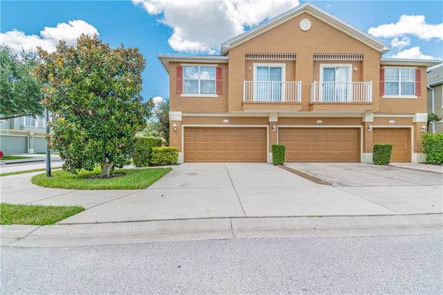 6830 Breezy Palm Drive, Riverview, FL 33578 (MLS #T3194453) :: The Price Group