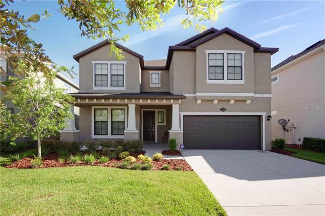 19223 Verdant Pasture Way, Tampa, FL 33647 (MLS #T3194464) :: Lovitch Realty Group, LLC
