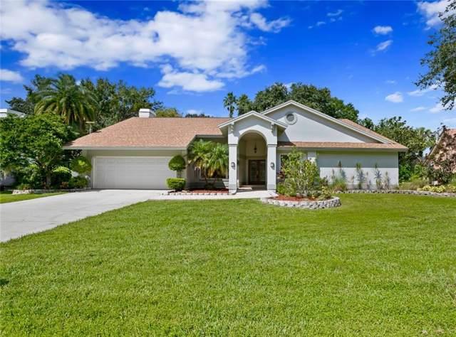 5410 Burchette Road, Tampa, FL 33647 (MLS #T3194487) :: The Robertson Real Estate Group