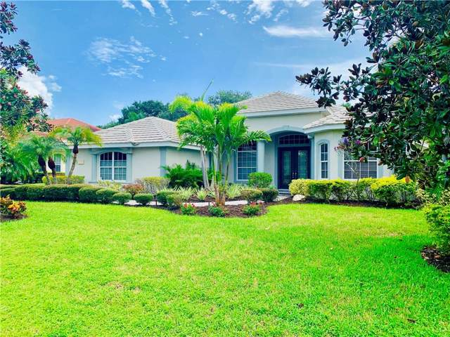 3780 Eagle Hammock Drive, Sarasota, FL 34240 (MLS #T3194532) :: Mark and Joni Coulter | Better Homes and Gardens