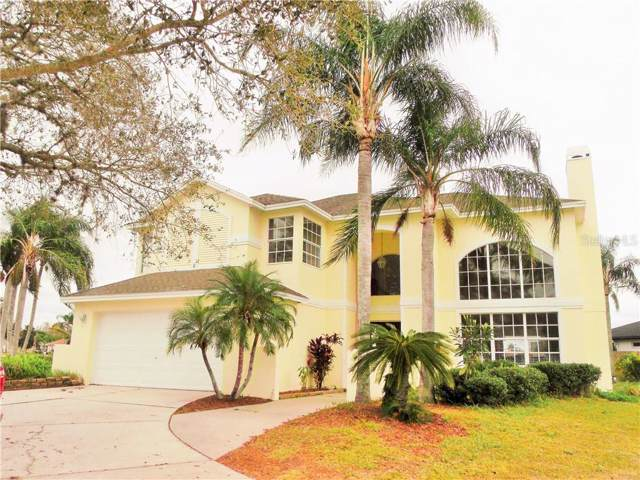 22620 Magnolia Trace Boulevard, Lutz, FL 33549 (MLS #T3194544) :: Premier Home Experts