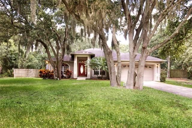 10402 Kankakee Lane, Riverview, FL 33578 (MLS #T3194545) :: Lovitch Realty Group, LLC