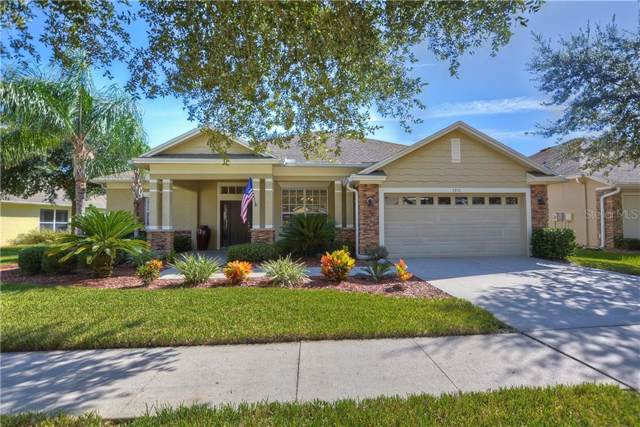 7210 Derwent Glen Circle, Land O Lakes, FL 34637 (MLS #T3194555) :: Cartwright Realty