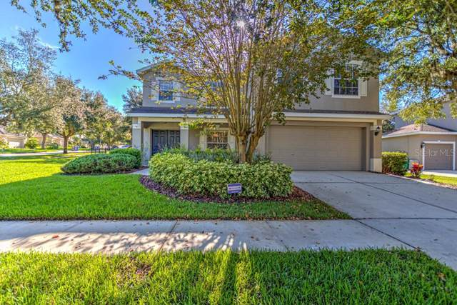 6102 Heroncrest Court, Lithia, FL 33547 (MLS #T3194599) :: Bustamante Real Estate