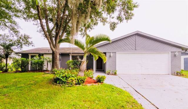 5825 Silver Moon Avenue, Tampa, FL 33625 (MLS #T3194609) :: Baird Realty Group
