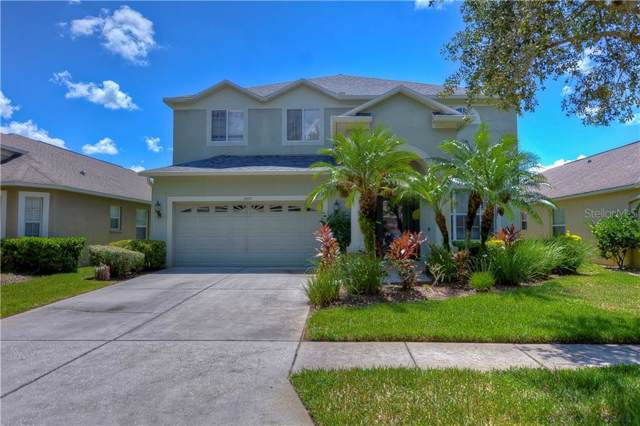 19152 Cypress Green Drive, Lutz, FL 33558 (MLS #T3194627) :: Kendrick Realty Inc