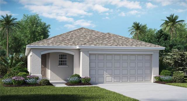 5136 White Chicory Drive, Apollo Beach, FL 33572 (MLS #T3194646) :: Lovitch Realty Group, LLC