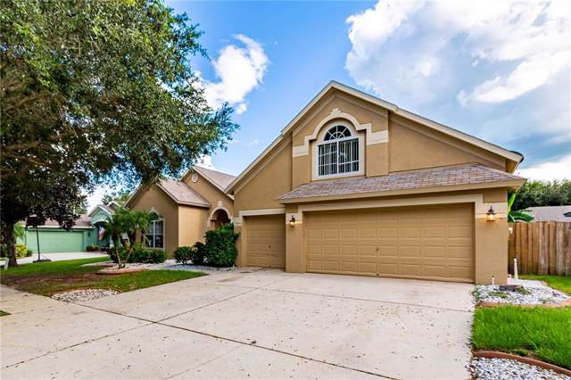 4319 Buckhorn Groves Court, Valrico, FL 33596 (MLS #T3194662) :: The Duncan Duo Team