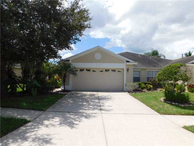 2929 Tanglewylde Drive, Land O Lakes, FL 34638 (MLS #T3194683) :: Cartwright Realty