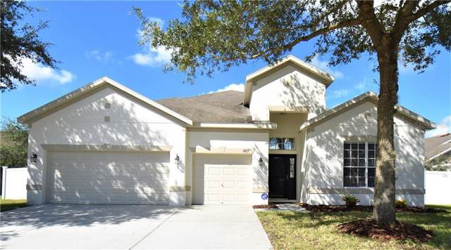 6825 Sparkling Way, Wesley Chapel, FL 33545 (MLS #T3194688) :: Griffin Group