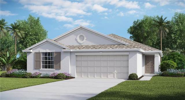 5017 White Chicory Drive, Apollo Beach, FL 33572 (MLS #T3194691) :: Lovitch Realty Group, LLC