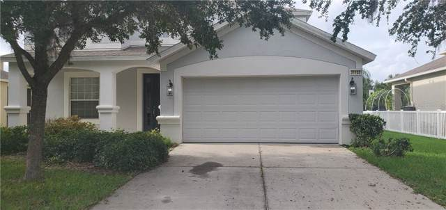 31103 Creekridge Drive, Wesley Chapel, FL 33543 (MLS #T3194713) :: Team Bohannon Keller Williams, Tampa Properties