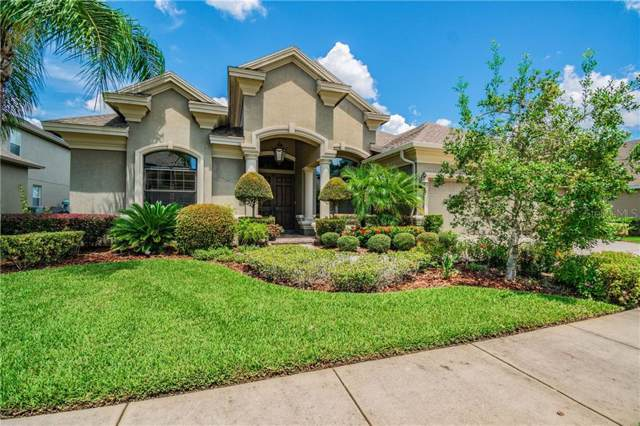 15019 Man O War Drive, Odessa, FL 33556 (MLS #T3194721) :: Premier Home Experts