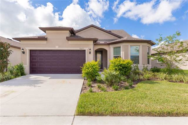 11617 Kilkenny Coral Drive, Riverview, FL 33579 (MLS #T3194746) :: The Figueroa Team