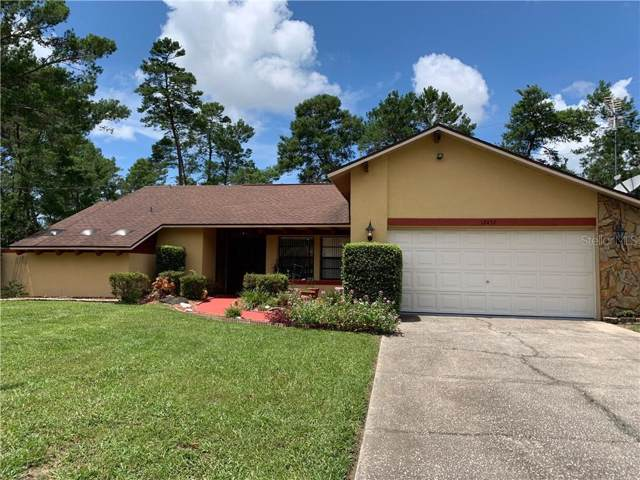 12457 Lola Drive, Spring Hill, FL 34608 (MLS #T3194819) :: Charles Rutenberg Realty