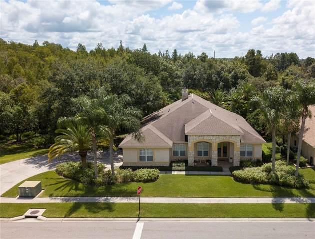 18615 Chemille Drive, Lutz, FL 33558 (MLS #T3194838) :: Kendrick Realty Inc