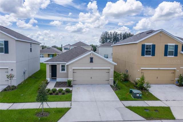 10125 Mangrove Well Road, Sun City Center, FL 33573 (MLS #T3194877) :: Baird Realty Group